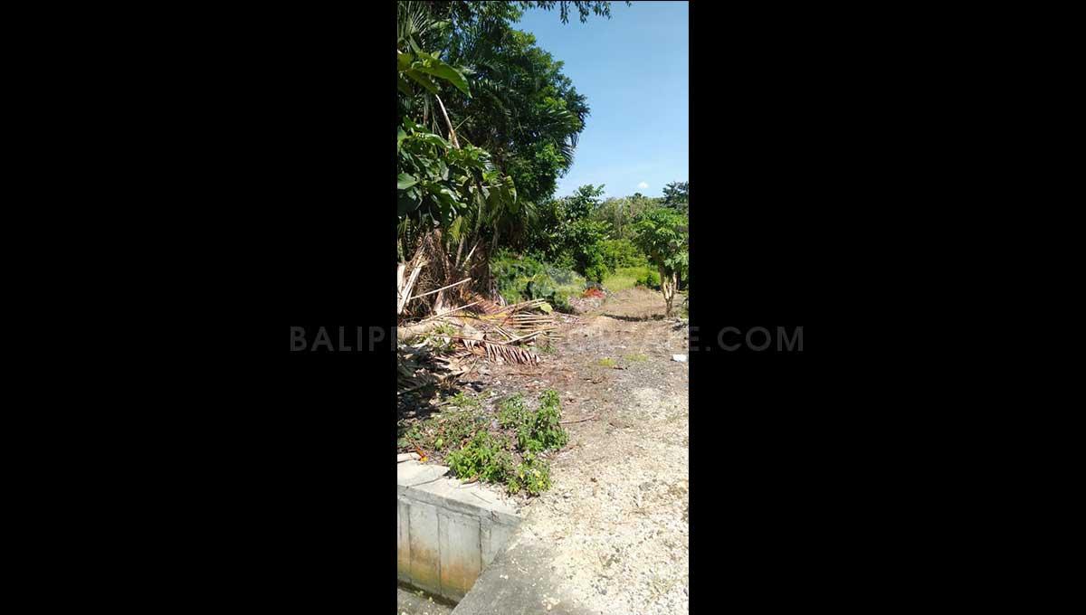 Pererenan-Bali-land-for-sale-FH-0701-d-min