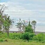 Saba-Bali-land-for-sale-FH-0661-a-min