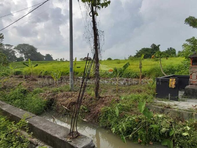 Seseh-Bali-land-for-sale-FH-0611-b-min