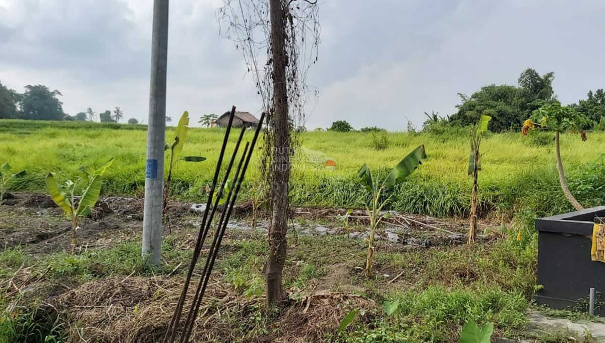 Seseh-Bali-land-for-sale-FH-0611-c-min