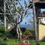 Seseh-Bali-villa-for-sale-FH-0686-c-min
