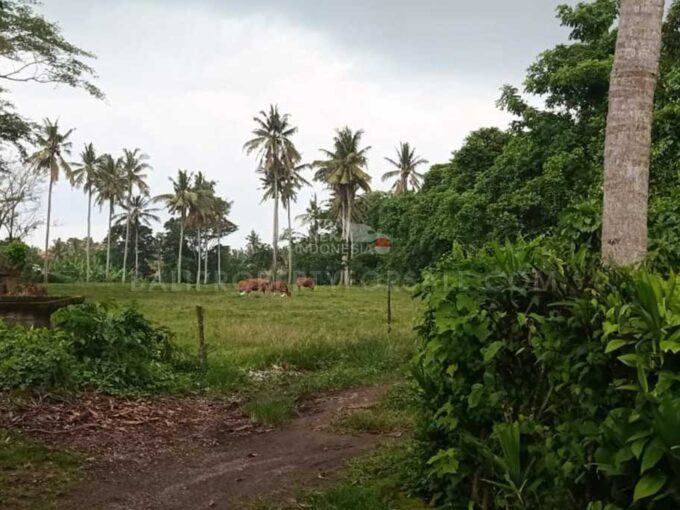 Tabanan-Bali-land-for-sale-FH-0706-d-min