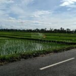 Tanah-Lot-Bali-land-for-sale-FH-0720-a-min