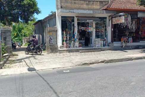 Ubud-Bali-land-for-sale-FH-0676-c-min