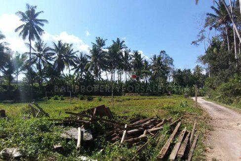 Ubud-Bali-land-for-sale-FH-0678-e-min