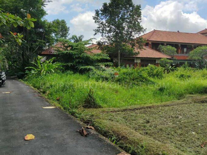 Ubud-Bali-land-for-sale-FH-0680-c-min