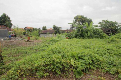 Canggu-Bali-land-for-lease-LL7002-c-min