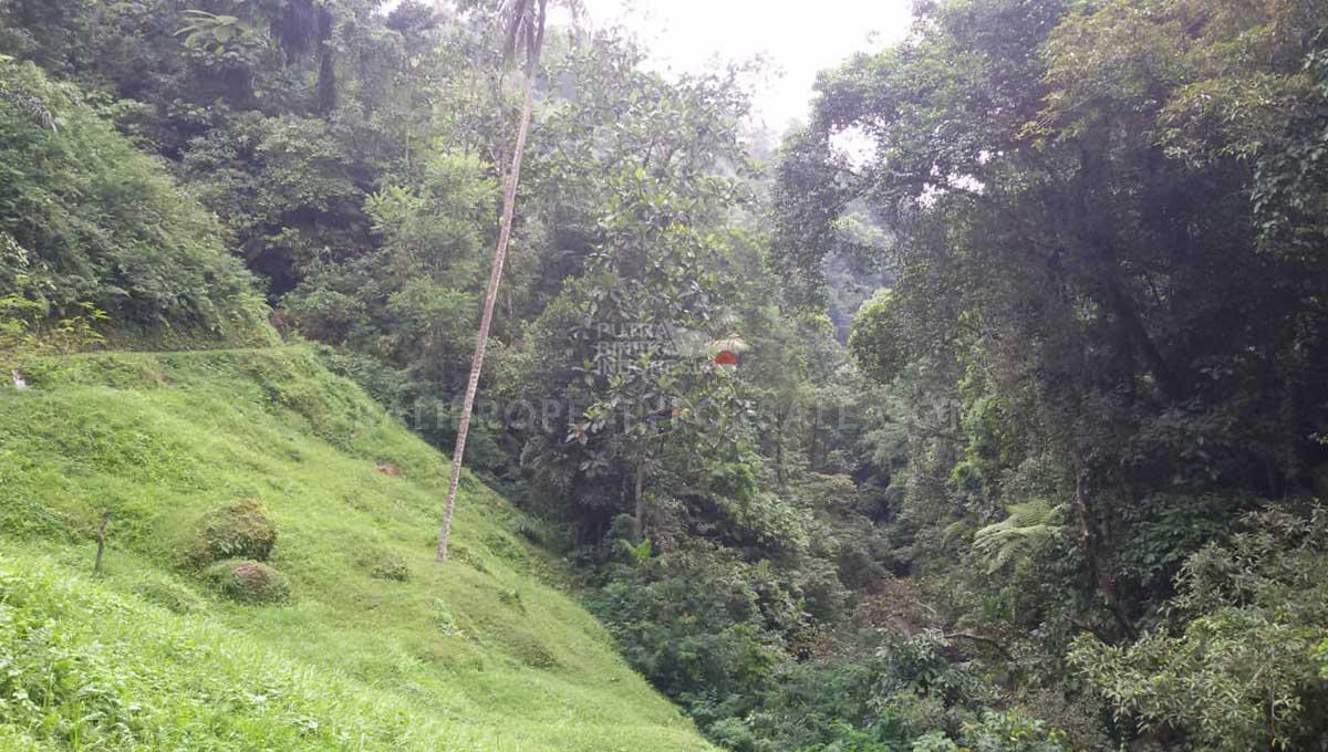 Payangan-Bali-land-for-sale-FH-0779-a-min