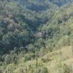 Payangan-Bali-land-for-sale-FH-0779-e-min