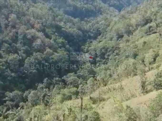 Payangan-Bali-land-for-sale-FH-0779-e-min