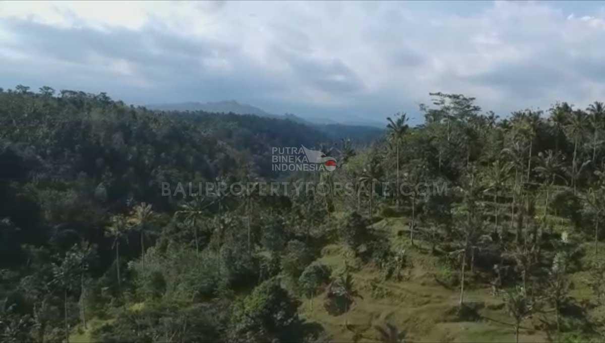 Payangan-Bali-land-for-sale-FH-0779-g-min