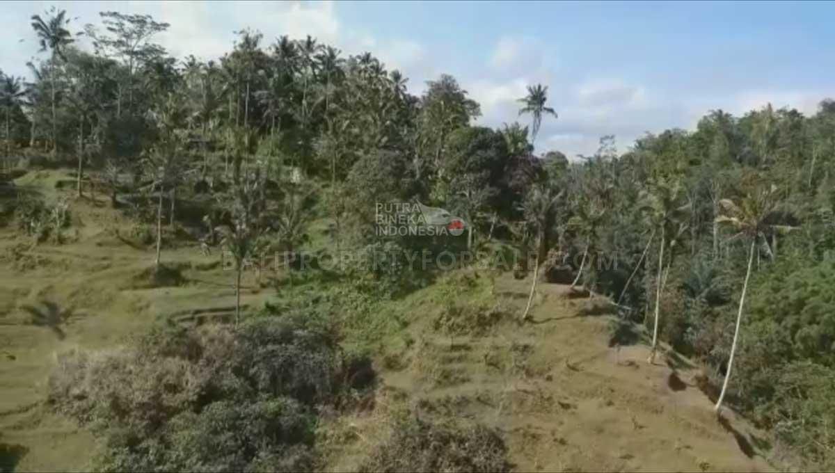 Payangan-Bali-land-for-sale-FH-0779-h-min