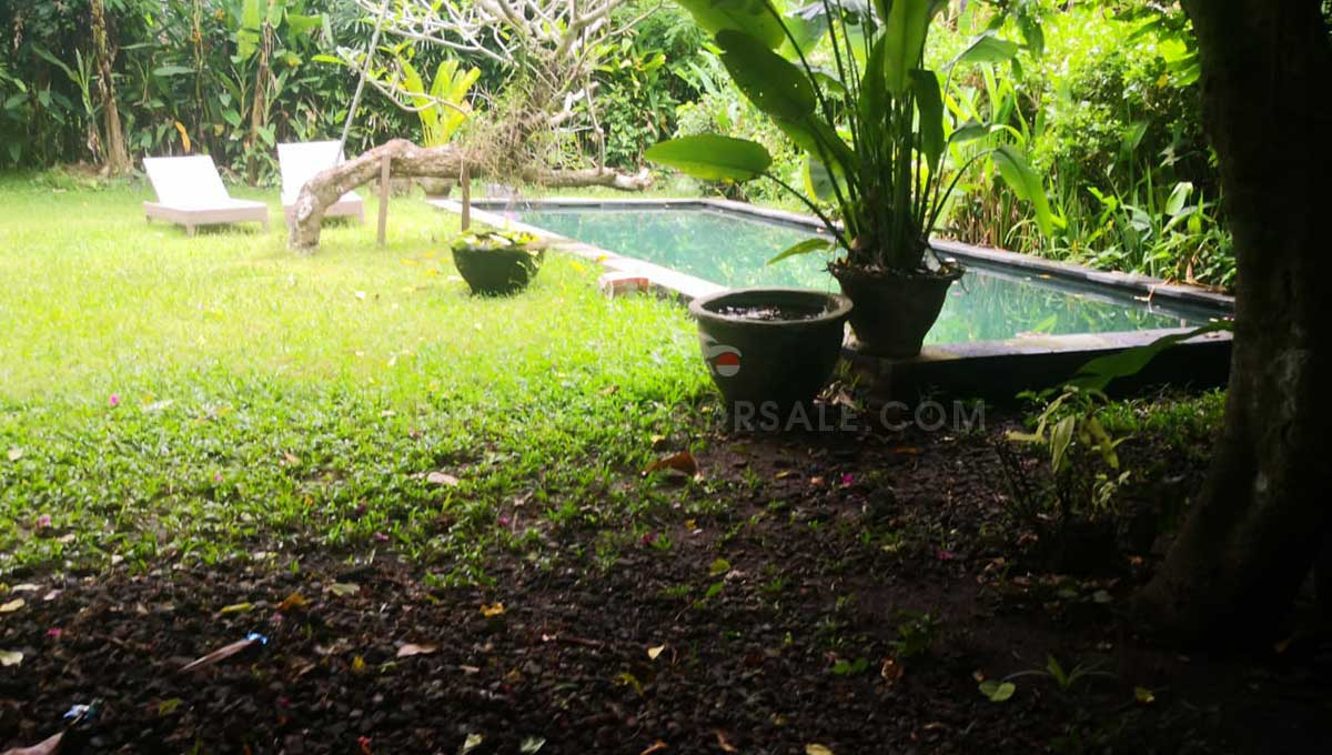 Pererenan-Bali-land-for-sale-FH-0755-a-min