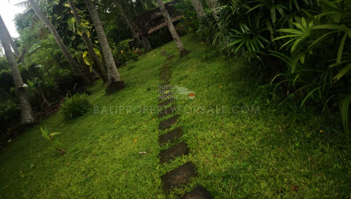 Pererenan-Bali-land-for-sale-FH-0755-c-min