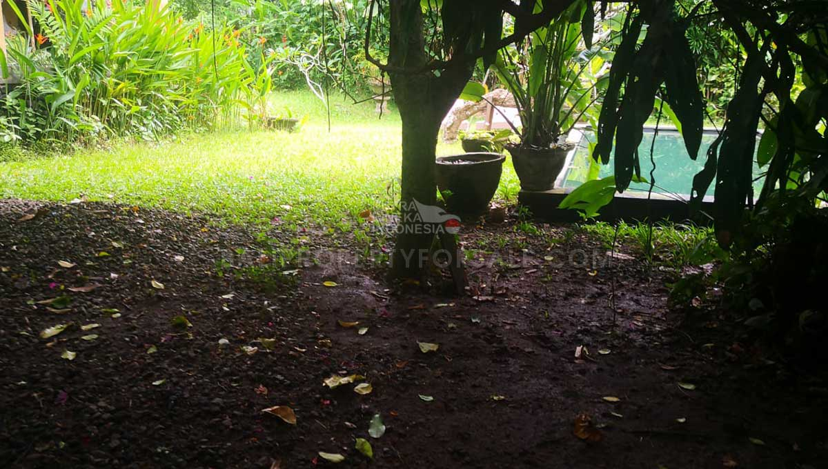 Pererenan-Bali-land-for-sale-FH-0755-d-min