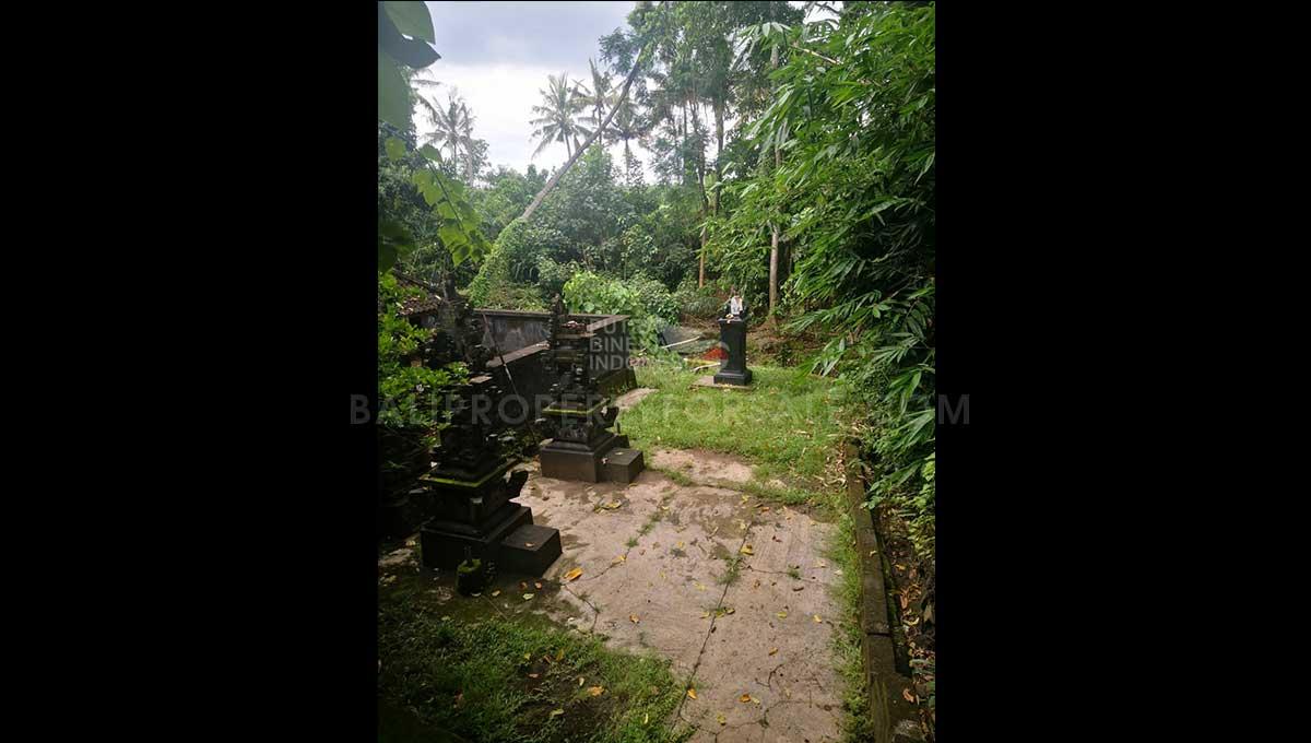 Pererenan-Bali-land-for-sale-FH-0755-g-min