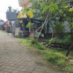 Sempidi-Bali-land-for-sale-FH-0753-a-min