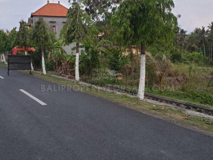 Tabanan-Bali-land-for-sale-FH-0760-e-min