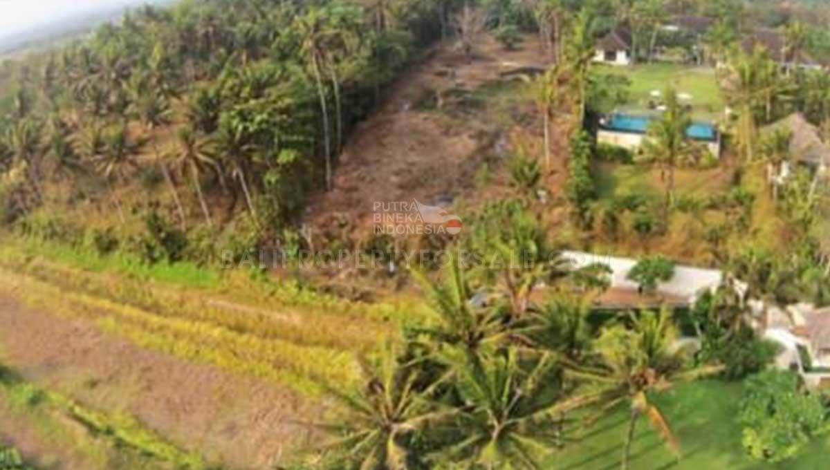 Tabanan-Bali-land-for-sale-FH-0761-a-min