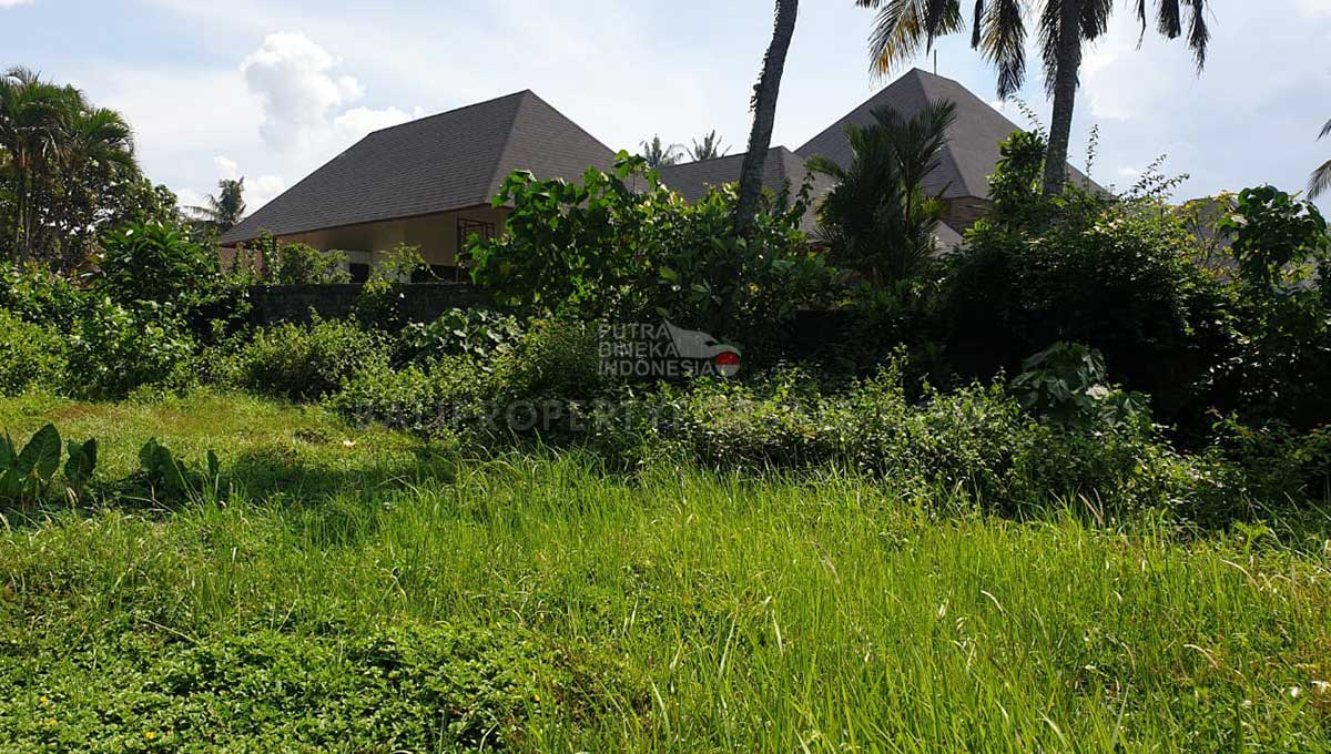 Tabanan-Bali-land-for-sale-FH-0761-e-min