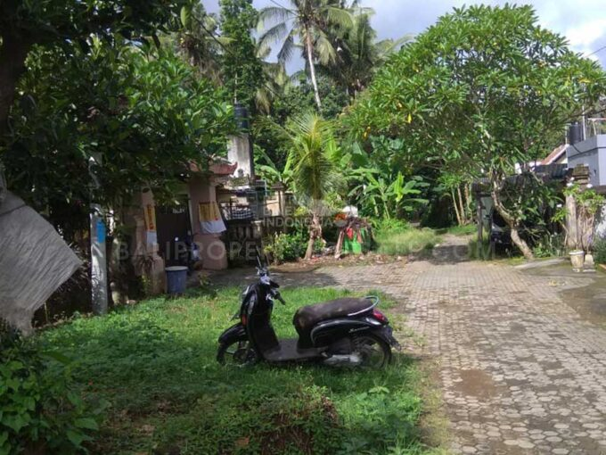Ubud-Bali-land-for-sale-LS7019-a-min