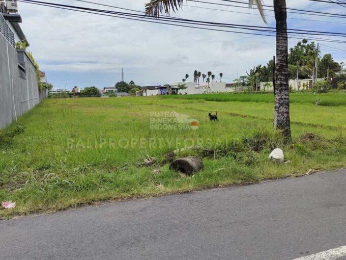 Umalas-Bali-land-for-lease-FH-0725-a-min