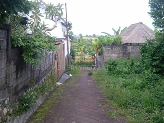 Land-for-sale-Canggu-LS7024-e