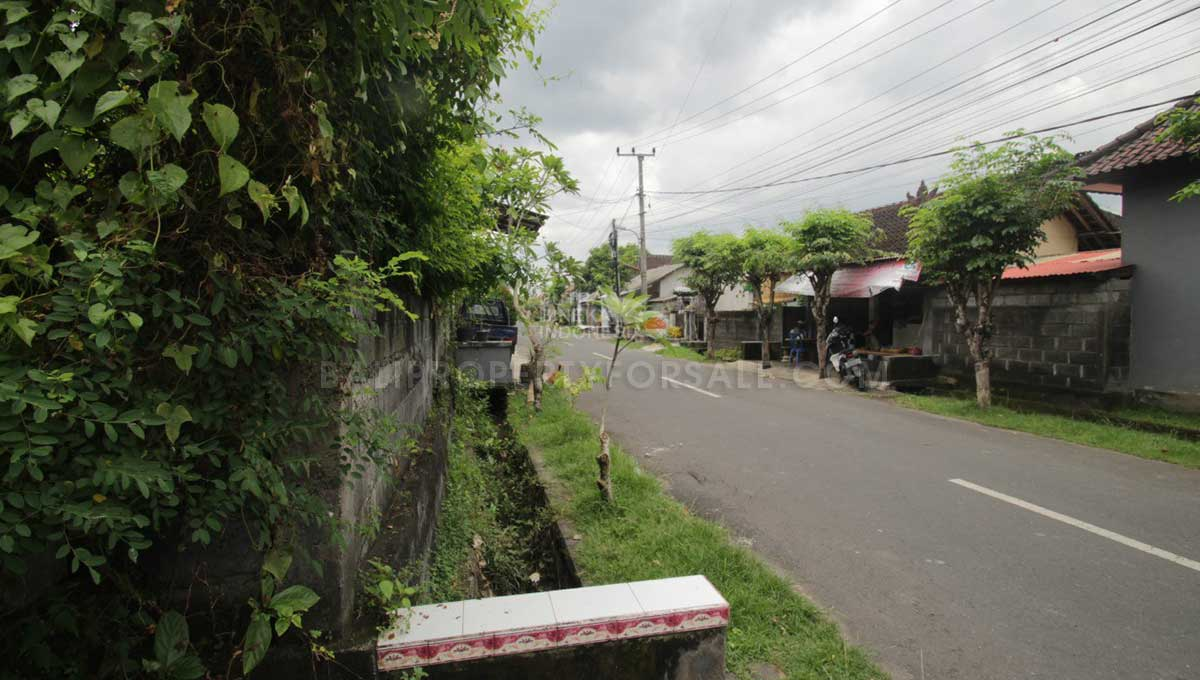 Land-for-sale-Canggu-LS7031-d