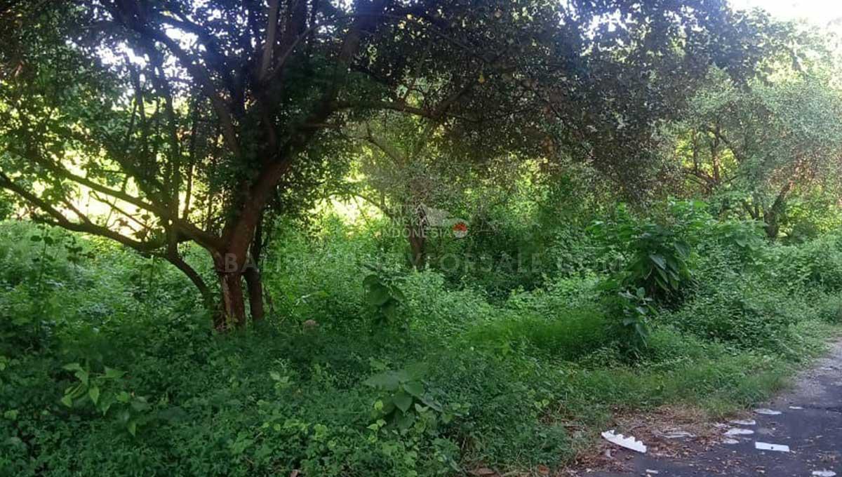 Land-for-sale-Jimbaran-LS7026-e