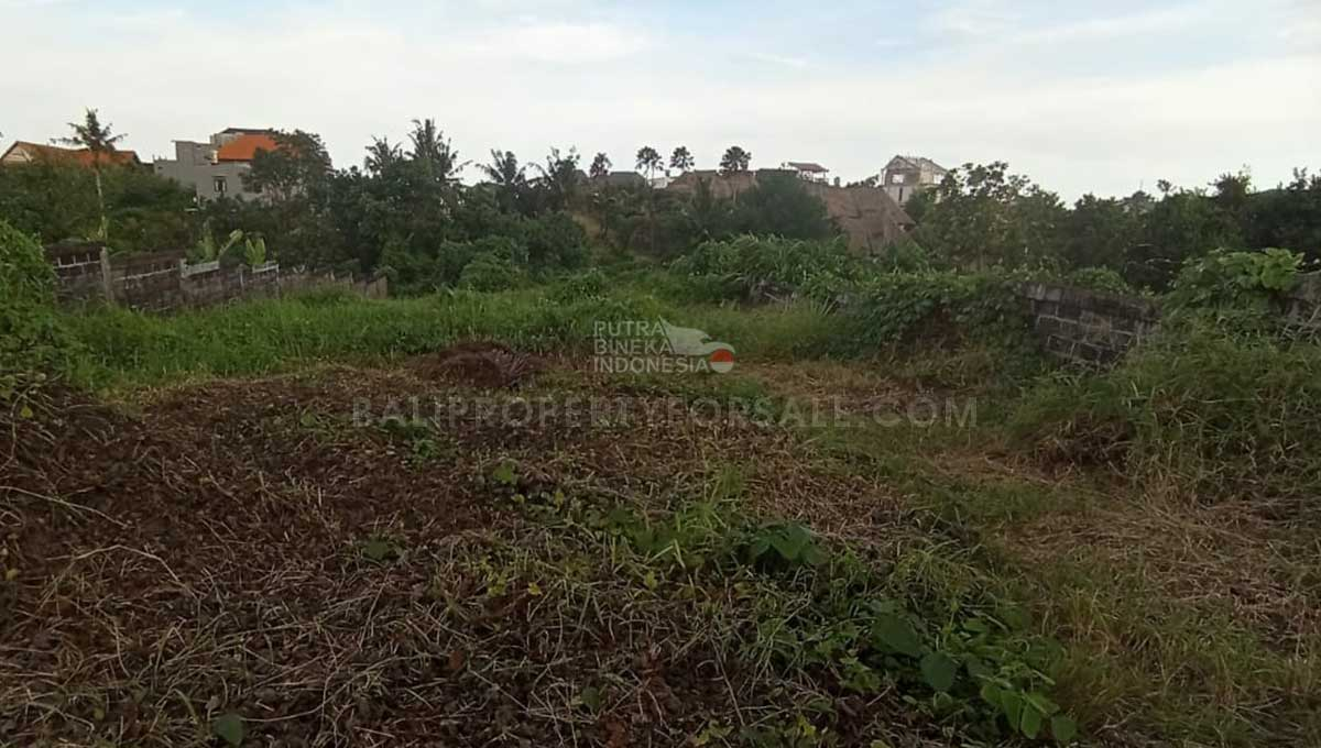 Land-for-sale-Pererenan-FH-0838-f