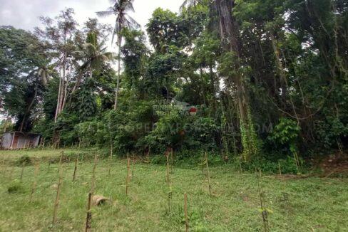 Land-for-sale-Ubud-Bali-FH-0814-e