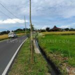 Land-for-rent-Canggu-FH-1007-a