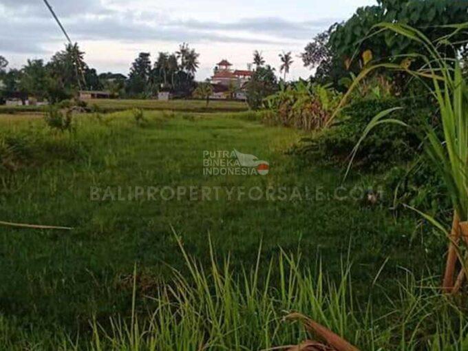 Land-for-sale-Canggu-FH-0928-a