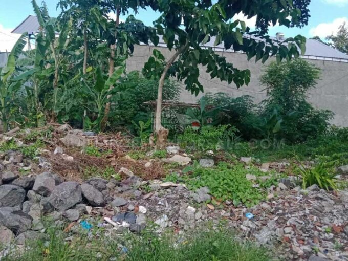 Land-for-sale-Dalung-FH-0923-b