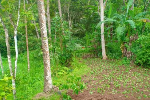 Land-for-sale-Gianyar-FH-1004-d