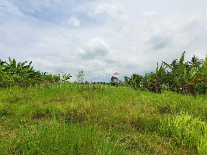 Land-for-sale-Pererenan-FH-0989-a