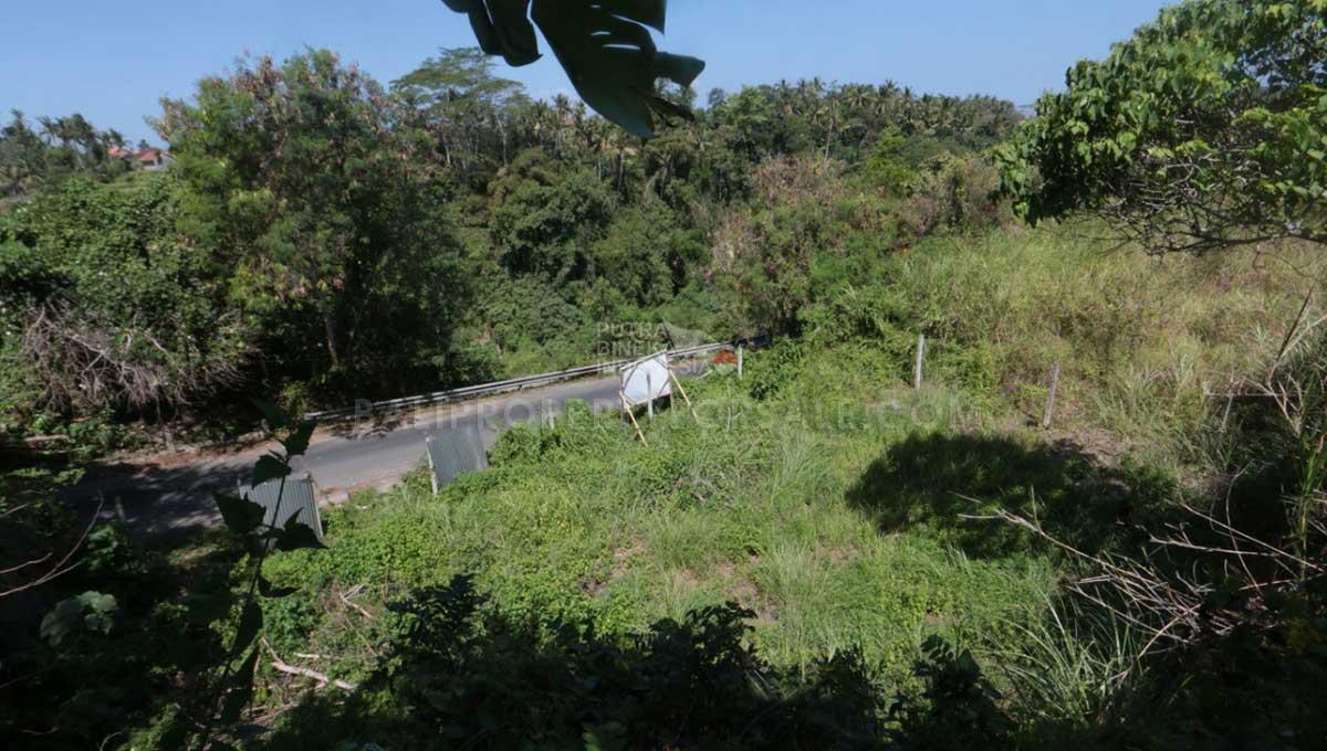Land-for-sale-Ubud-FH-0917-d