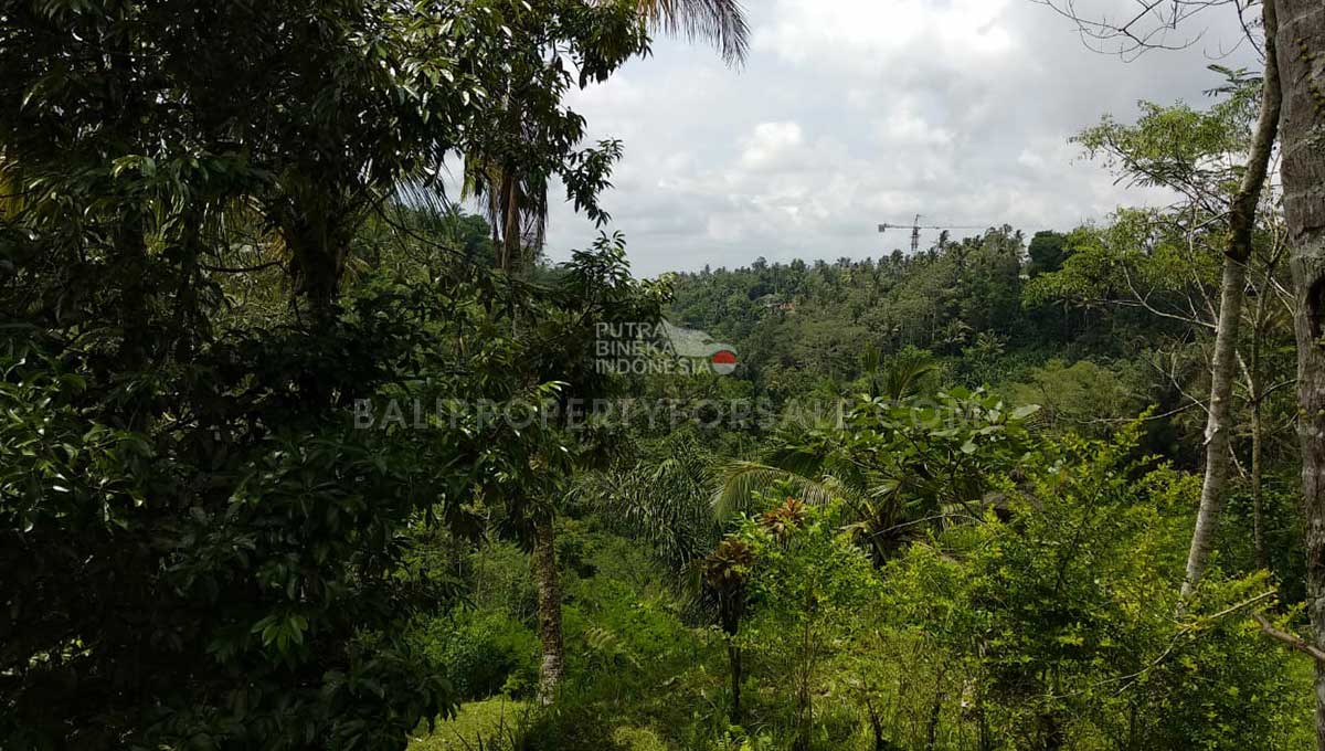 Land-for-sale-Ubud-FH-1003-d