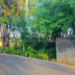 Land-for-rent-Berawa-FH-1049-h