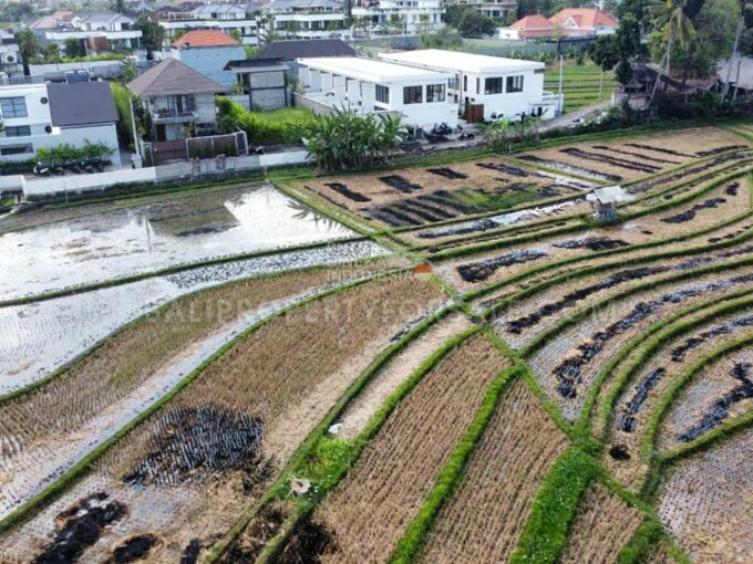 Land-for-sale-Canggu-FH-1080-e