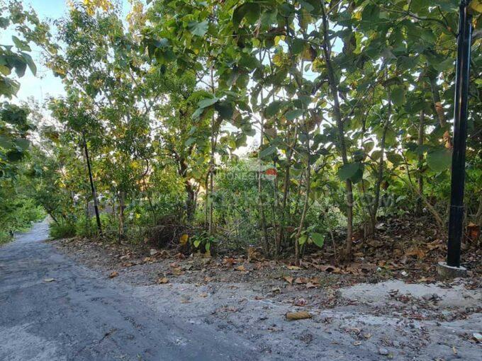 Land-for-sale-Jimbaran-FH-1056-a