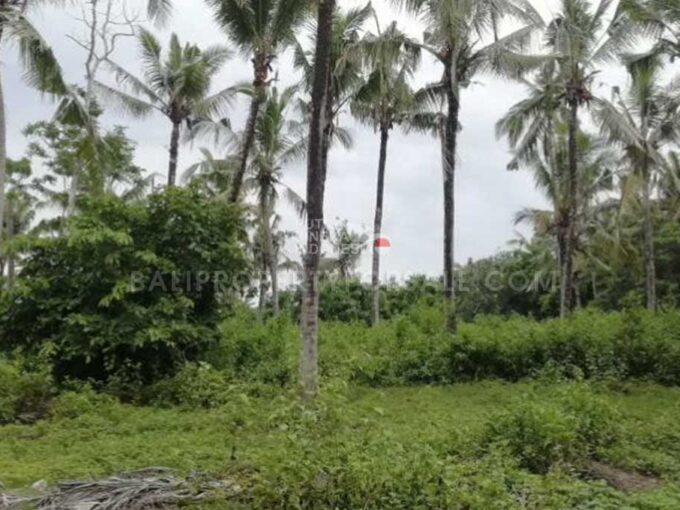 Land-for-sale-Tabanan-FH-1063-a