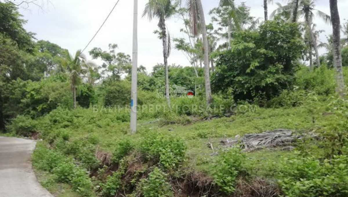 Land-for-sale-Tabanan-FH-1063-d