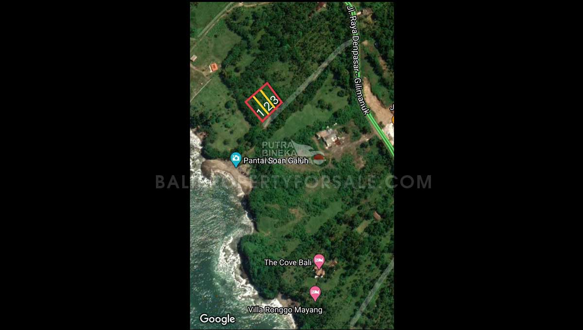 Land-for-sale-Tabanan-FH-1063-f
