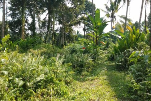 Land-for-sale-Ubud-FH-1069-c