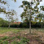 Land for sale Pecatu FH-1123 a
