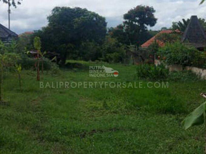 Land-for-sale-Berawa-FH-1197-e