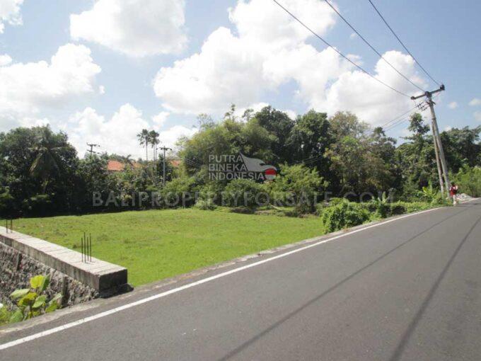 Land-for-sale-Berawa-FH-1227-f