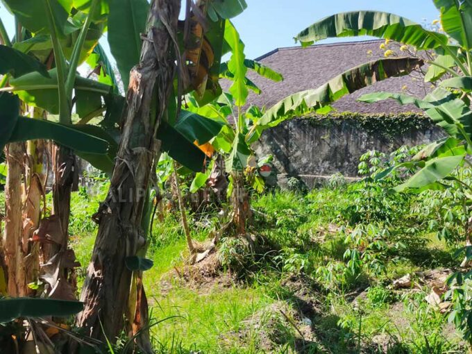 Land-for-sale-Berawa-FH-1256-a