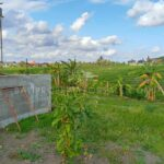 Land-for-sale-Cemagi-FH-1205-a